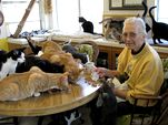 Photo for Confessions of an Animal Hoarder
