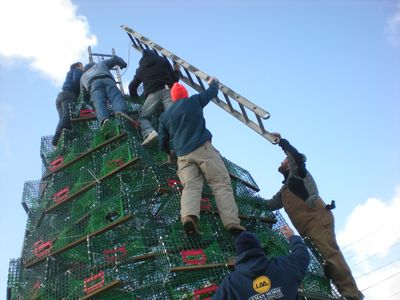 Extreme Christmas Trees : Programs : Discovery Real Time ...