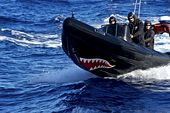 Photo for Whale Wars 5