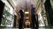 Photo for Ghost Stalkers