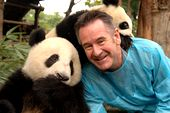 Photo for Panda Adventure with Nigel Marven