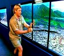 Photo for Steve Irwin - sein letzter Film
