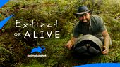 Photo for EXTINCT OR ALIVE