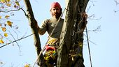 Photo for Mountain Monsters 1B