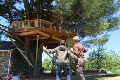 treehouse masters beehive treehouse masters programs animal planet discovery press web