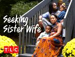 Image for Seeking Sister Wife