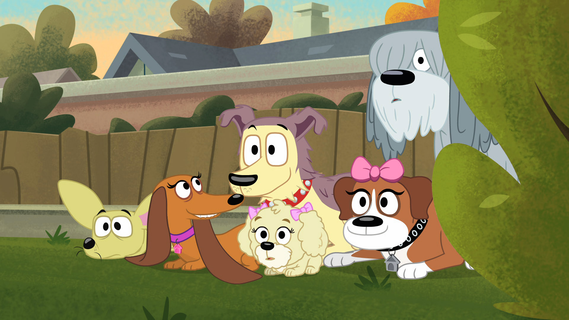 Pound Puppies Programs The Hub Network Discovery Press Web